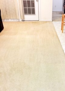 After our carpet cleaning service in Raleigh, NC