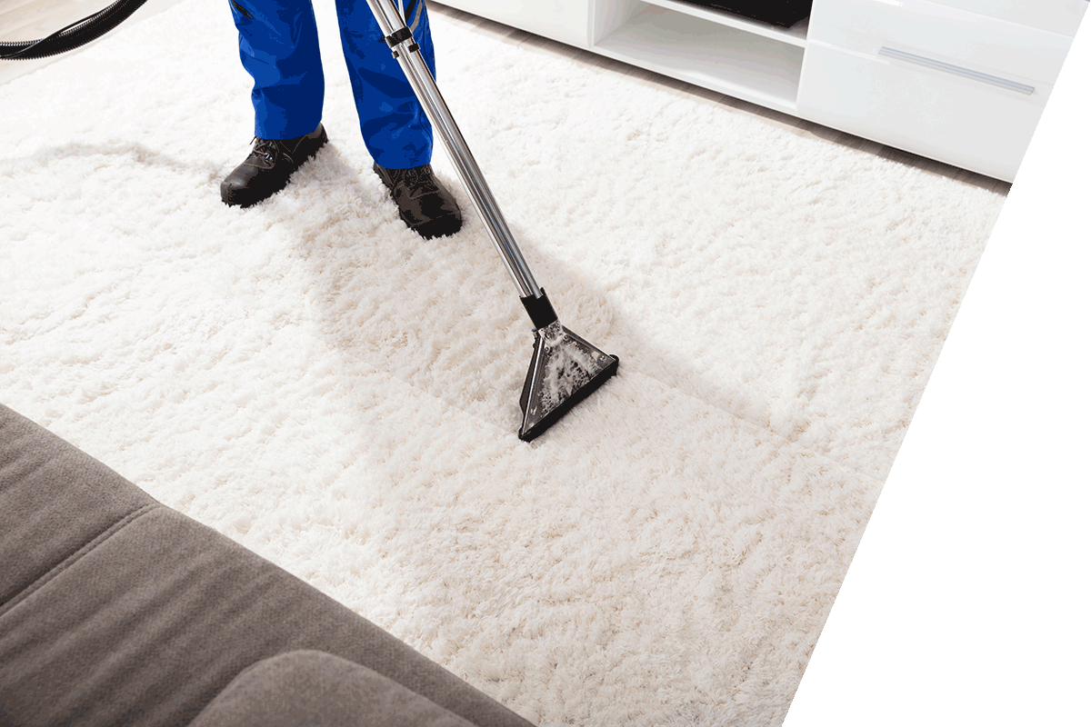 Carpet Cleaning in Raleigh NC